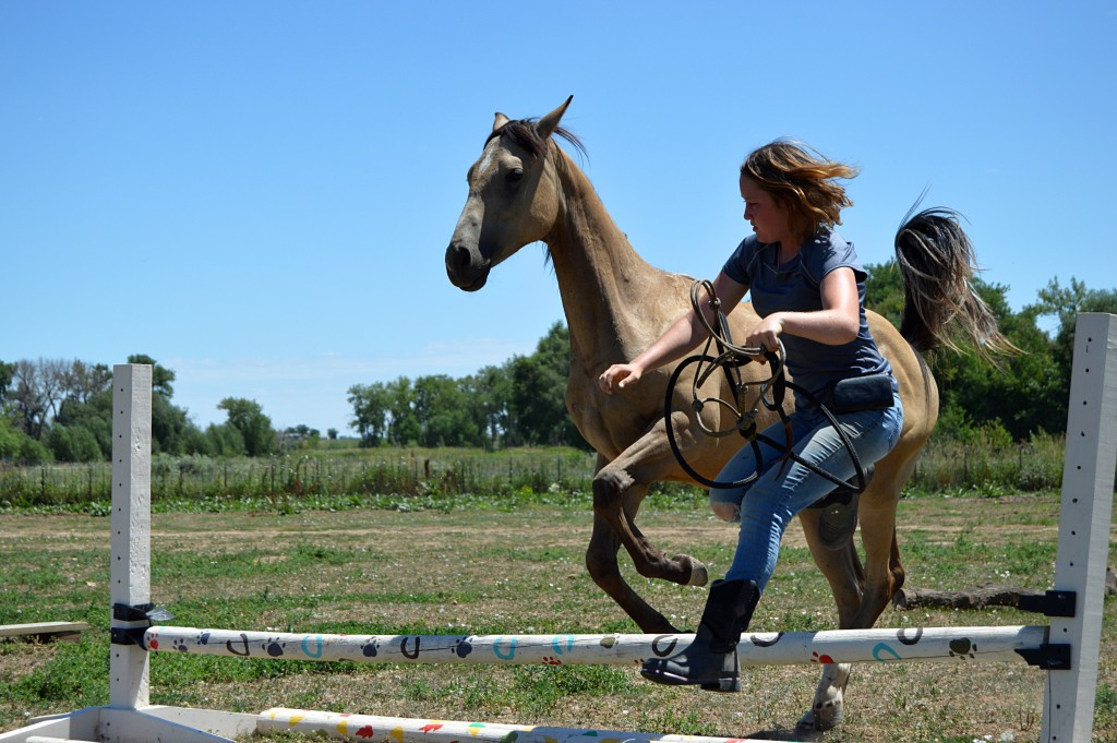 A horse and human in partnership, jumping their first obstacle at one of our Liberty Clinics.